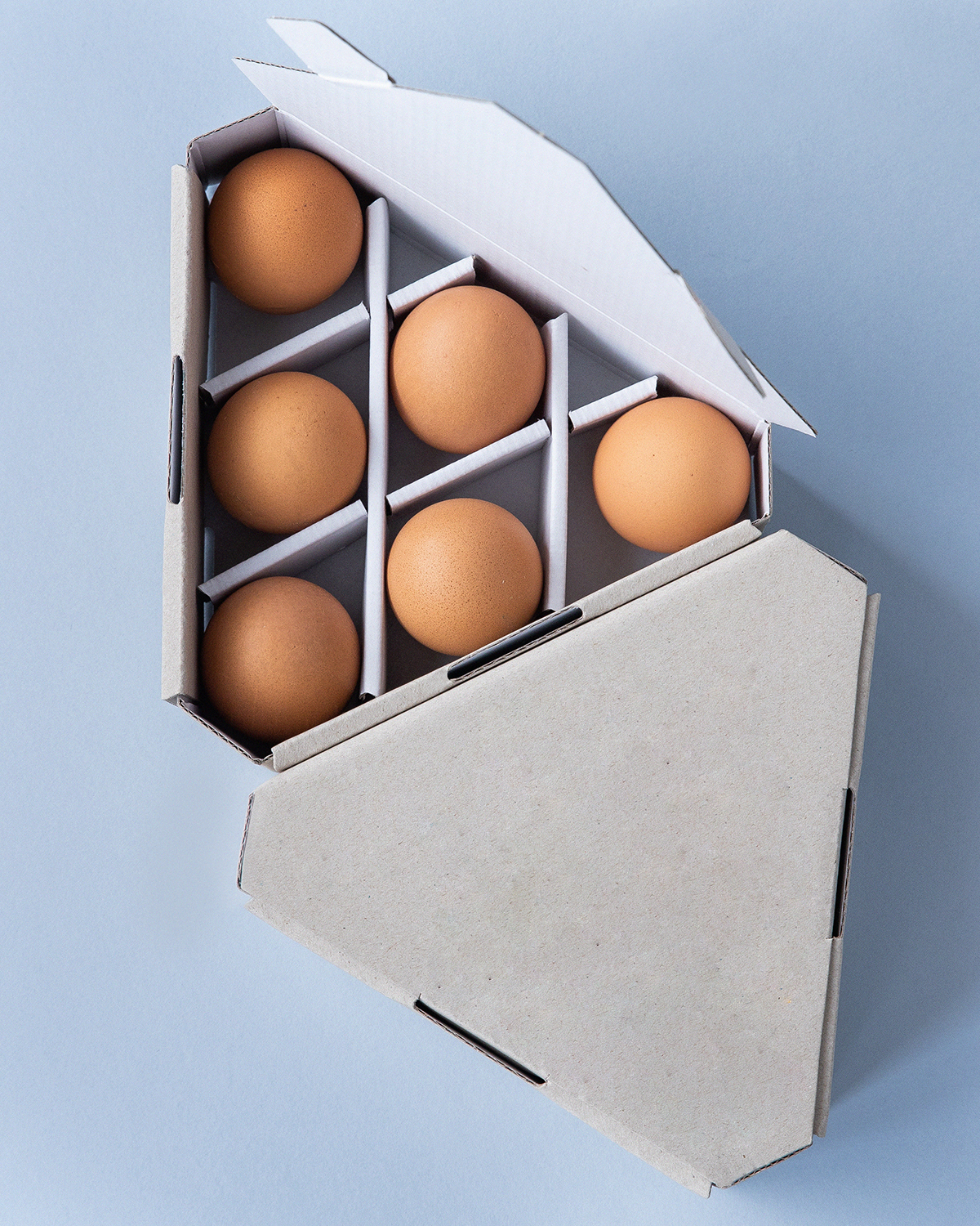 Find Five Facts On Egg Packaging. How Does It Protect The Egg? » City Of Packaging
